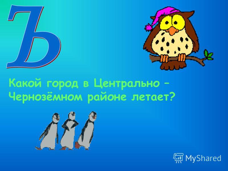 Какой город в Центрально – Чернозёмном районе летает?
