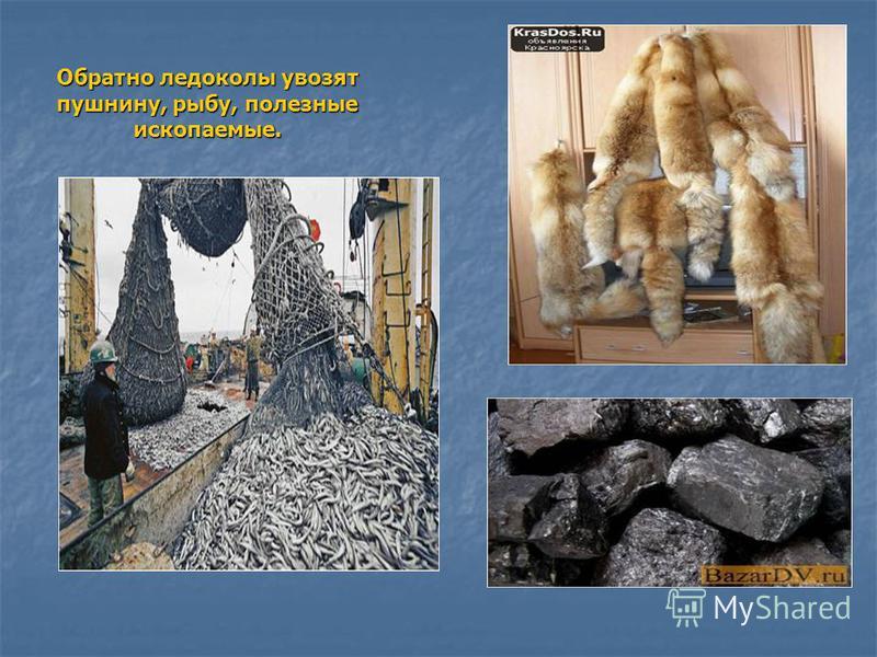Обратно ледоколы увозят пушнину, рыбу, полезные ископаемые.