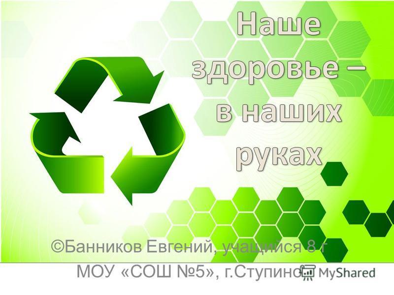 ©Банников Евгений, учащийся 8 г МОУ «СОШ 5», г.Ступино