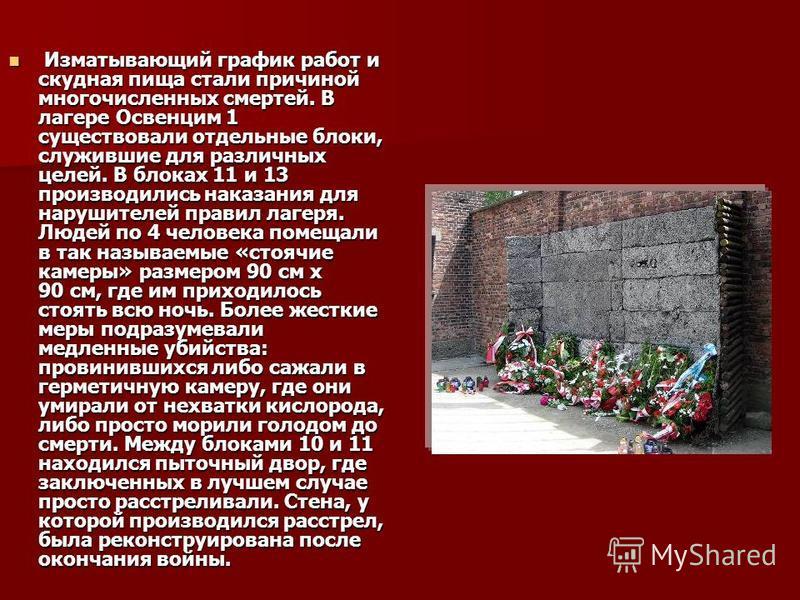 Изматывающий график работ и скудная пища стали причиной многочисленных смертей. В лагере Освенцим 1 существовали отдельные блоки, служившие для различных целей. В блоках 11 и 13 производились наказания для нарушителей правил лагеря. Людей по 4 челове