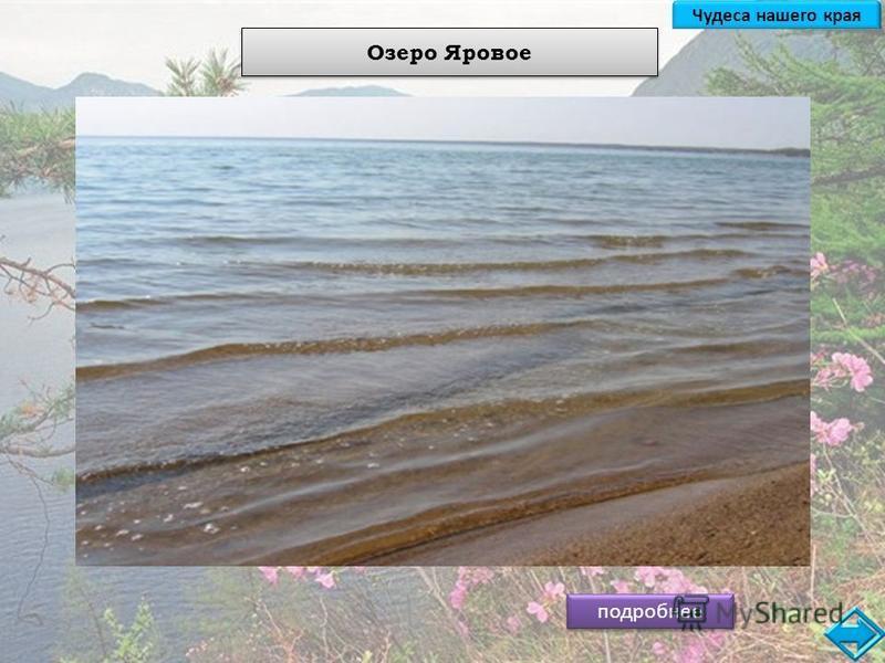 Озеро Яровое подробнее Озеро Большое Яровое расположено в центральной Кулундинской степи, в 8 км к западу от г. Славгорода. С древних времен легенды скифских народов считали озеро Яровое местом исполнения всех желаний! Буквально по дну озера проходят