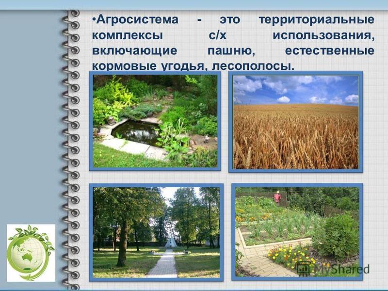 Агросистема - это территориальные комплексы с/х использования, включающие пашню, естественные кормовые угодья, лесополосы.
