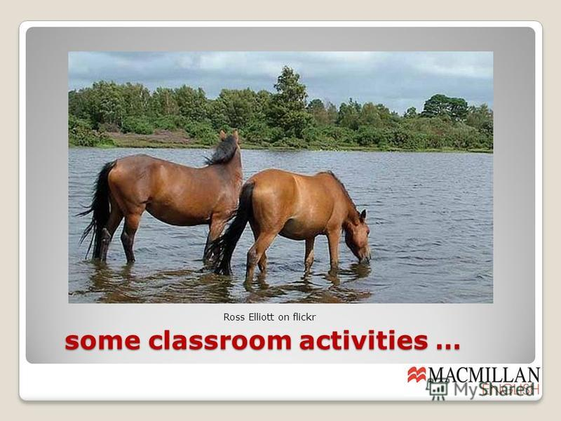 some classroom activities … some classroom activities … Ross Elliott on flickr