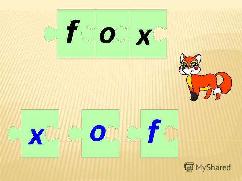 oxox ff