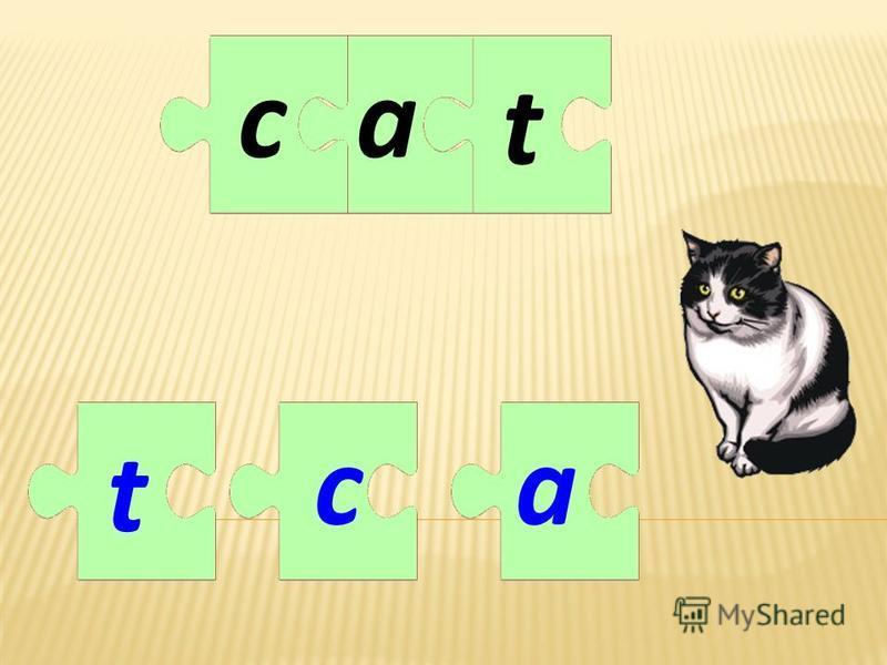 a t a t cc
