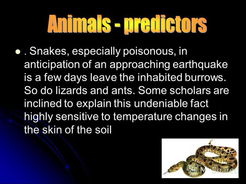 . Snakes, especially poisonous, in anticipation of an approaching earthquake is a few days leave the inhabited burrows. So do lizards and ants. Some scholars are inclined to explain this undeniable fact highly sensitive to temperature changes in the