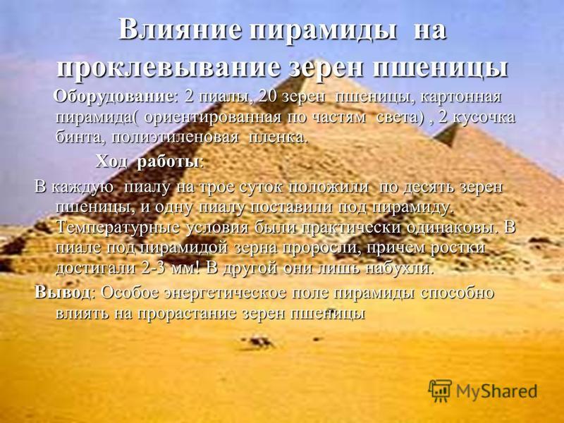 Влияние пирамиды на проклевывание зерен пшеницы Оборудование: 2 пиалы, 20 зерен пшеницы, картонная пирамида( ориентированная по частям света), 2 кусочка бинта, полиэтиленовая пленка. Оборудование: 2 пиалы, 20 зерен пшеницы, картонная пирамида( ориент