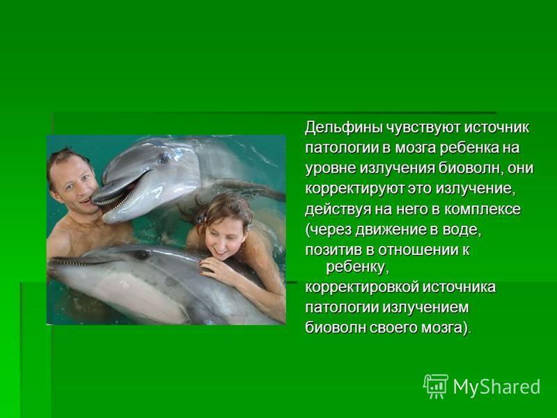 Дельфины чувствуют источник патологии в мозга ребенка на уровне излучения био волн, они корректируют это излучение, действуя на него в комплексе (через движение в воде, позитив в отношении к ребенку, корректировкой источника патологии излучением био