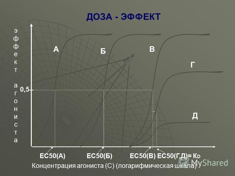 А Б В Г Д эффектагонистаэффектагониста ЕС50(А)ЕС50(Б)ЕС50(В)ЕС50(Г,Д)= К D Концентрация агониста (С) (логарифмическая шкала) 0,5 ДОЗА - ЭФФЕКТ