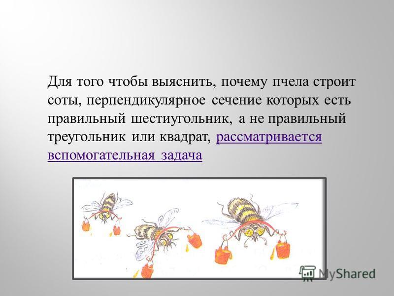 Для того чтобы выяснить, почему пчела строит соты, перпендикулярное сечение которых есть правильный шестиугольник, а не правильный треугольник или квадрат, рассматривается вспомогательная задача рассматривается вспомогательная задача