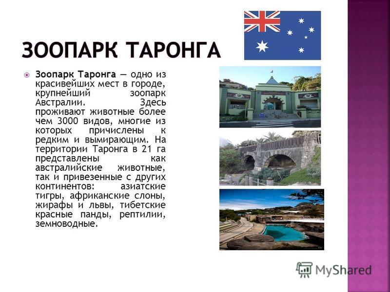 Зоопарк Таронга одно из красивейших мест в городе, крупнейший зоопарк Австралии. Здесь проживают животные более чем 3000 видов, многие из которых причислены к редким и вымирающим. На территории Таронга в 21 га представлены как австралийские животные,
