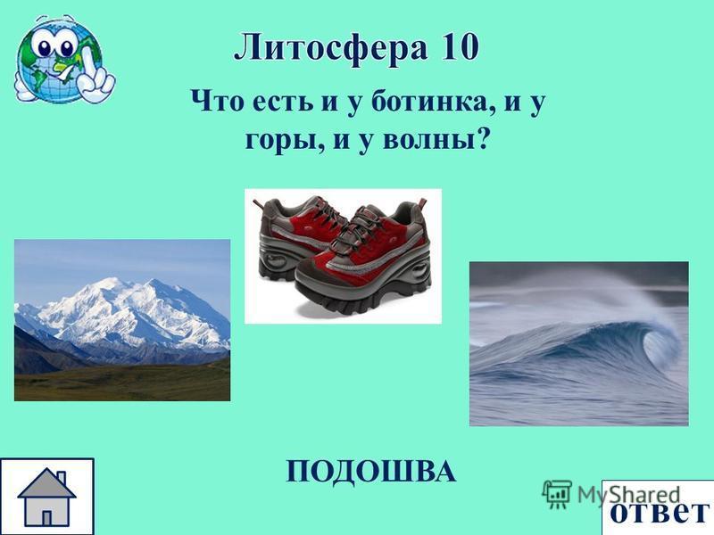 Что есть и у ботинка, и у горы, и у волны ? ПОДОШВА