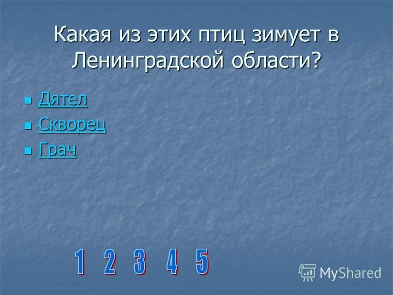 Какая из этих птиц зимует в Ленинградской области? Дятел Дятел Дятел Скворец Скворец Скворец Грач Грач Грач