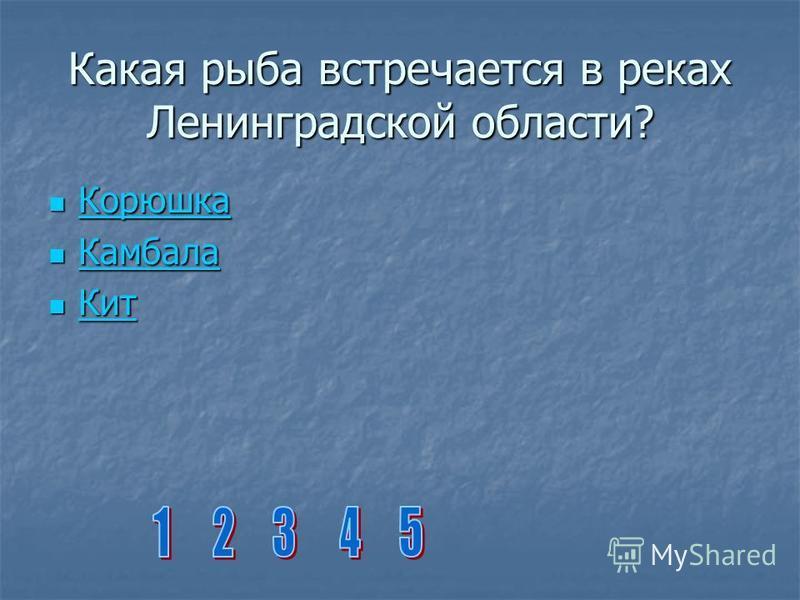 Какая рыба встречается в реках Ленинградской области? Корюшка Корюшка Корюшка Камбала Камбала Камбала Кит Кит Кит