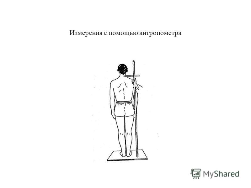 Измерения с помощью антропометра