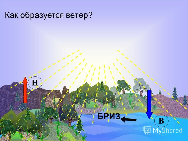Ветер Ветер – это перемещение воздуха в горизонтальном направлении из области высокого давления в область низкого давления.
