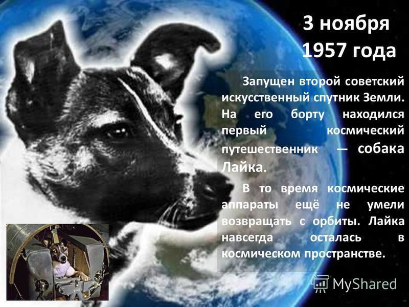 3 ноября 1957 года Запущен второй советский искусственный спутник Земли. На его борту находился первый космический путешественник собака Лайка. В то время космические аппараты ещё не умели возвращать с орбиты. Лайка навсегда осталась в космическом пр