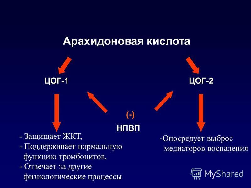Арахидоновая кислота ЦОГ-1 ЦОГ-2 ЦОГ-1 ЦОГ-2 НПВП (-) - Защищает ЖКТ, - Поддерживает нормальную функцию тромбоцитов, - Отвечает за другие физиологические процессы -Опосредует выброс медиаторов воспаления