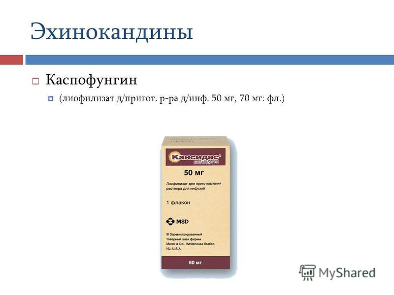Каспофунгин (лиофилизат д/пригот. р-ра д/инф. 50 мг, 70 мг: фл.) Эхинокандины