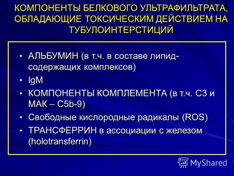 КОМПОНЕНТЫ БЕЛКОВОГО УЛЬТРАФИЛЬТРАТА, ОБЛАДАЮЩИЕ ТОКСИЧЕСКИМ ДЕЙСТВИЕМ НА ТУБУЛОИНТЕРСТИЦИЙ АЛЬБУМИН (в т.ч. в составе липид- содержащих комплексов) АЛЬБУМИН (в т.ч. в составе липид- содержащих комплексов) IgM IgM КОМПОНЕНТЫ КОМПЛЕМЕНТА (в т.ч. С3 и