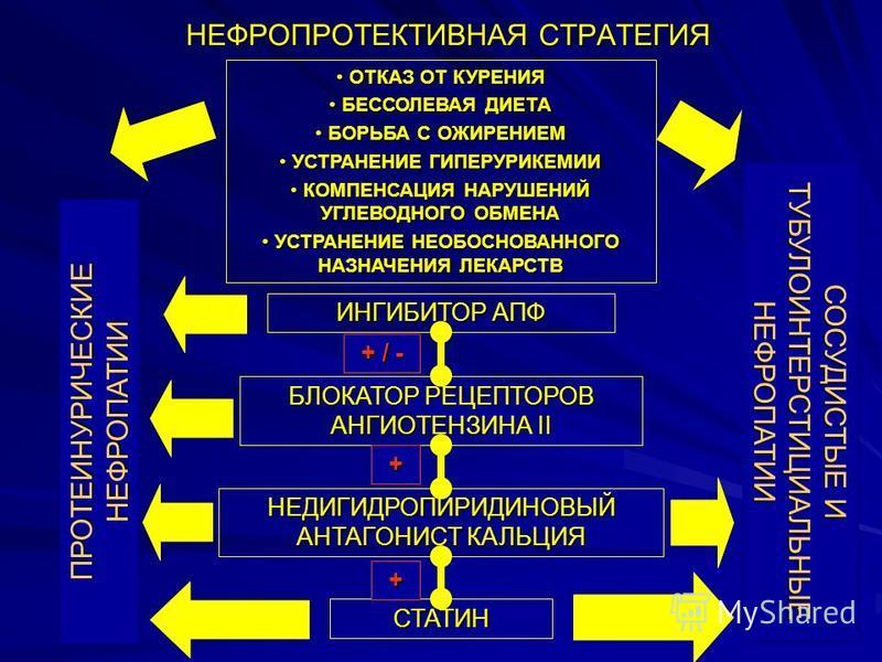 НЕФРОПРОТЕКТИВНАЯ СТРАТЕГИЯ ИНГИБИТОР АПФ БЛОКАТОР РЕЦЕПТОРОВ АНГИОТЕНЗИНА II НЕДИГИДРОПИРИДИНОВЫЙ АНТАГОНИСТ КАЛЬЦИЯ СТАТИН + / - + + ПРОТЕИНУРИЧЕСКИЕ НЕФРОПАТИИ СОСУДИСТЫЕ И ТУБУЛОИНТЕРСТИЦИАЛЬНЫЕ НЕФРОПАТИИ ОТКАЗ ОТ КУРЕНИЯ ОТКАЗ ОТ КУРЕНИЯ БЕССОЛ