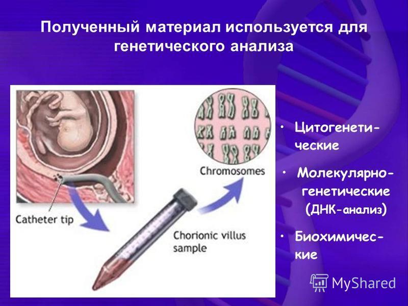 Полученный материал используется для генетического анализа Цитогенети- ческие Молекулярно- генетические ( ДНК-анализ ) Биохимичес- кие