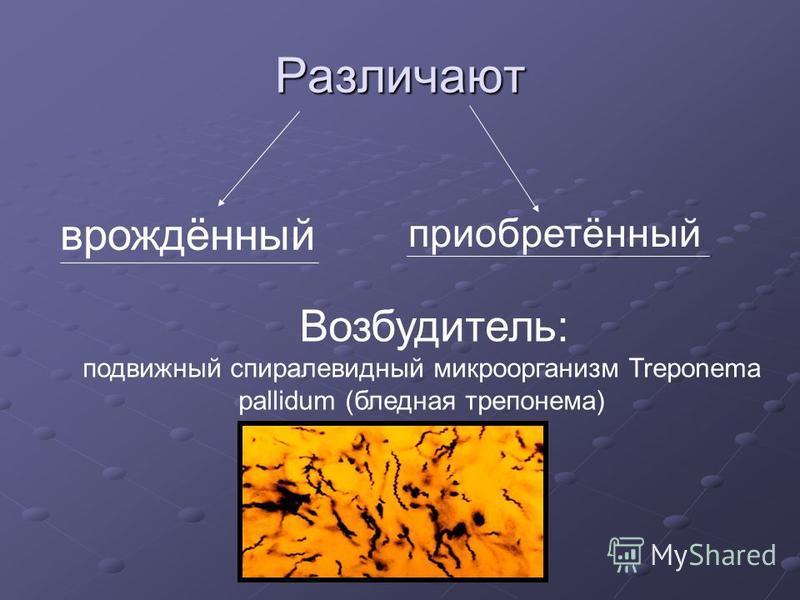Различают врождённый приобретённый Возбудитель: подвижный спиралевидный микроорганизм Treponema pallidum (бледная трепонема)