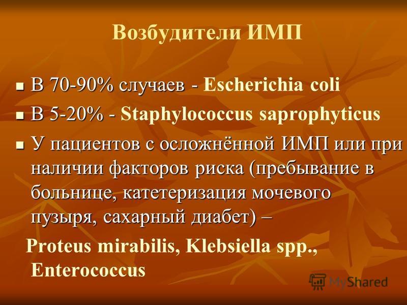 Возбудители ИМП В 70-90% случаев - В 70-90% случаев - Escherichia coli В 5-20% - В 5-20% - Staphylococcus saprophyticus У пациентов с осложнённой ИМП или при наличии факторов риска (пребывание в больнице, катетеризация мочевого пузыря, сахарный диабе