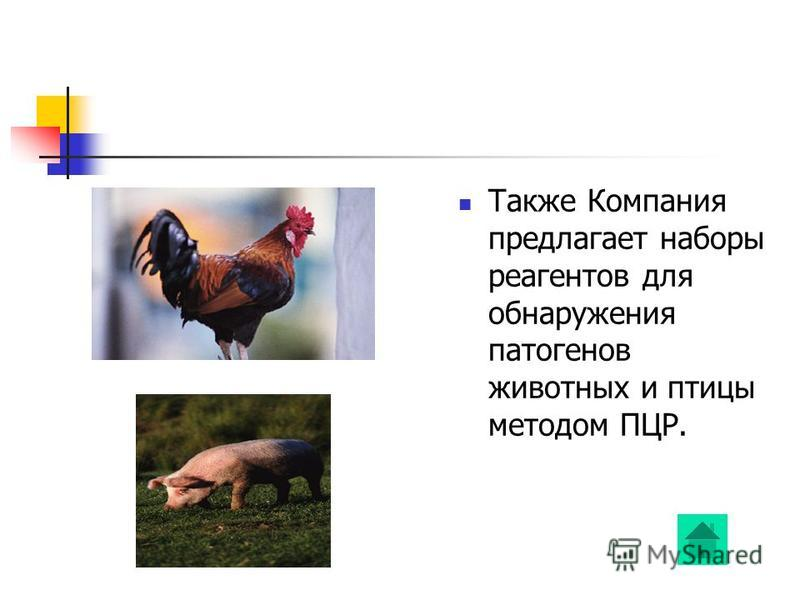Также Компания предлагает наборы реагентов для обнаружения патогенов животных и птицы методом ПЦР.