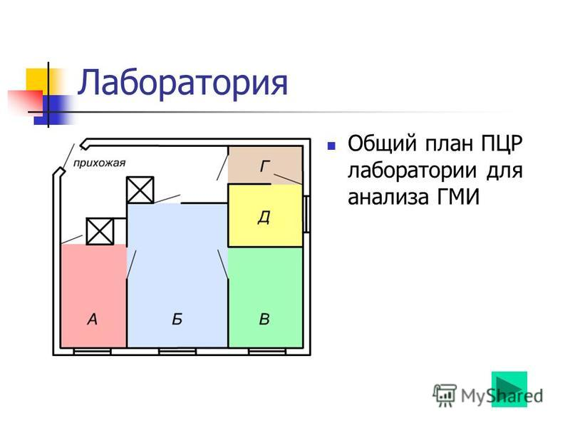 Лаборатория Общий план ПЦР лаборатории для анализа ГМИ