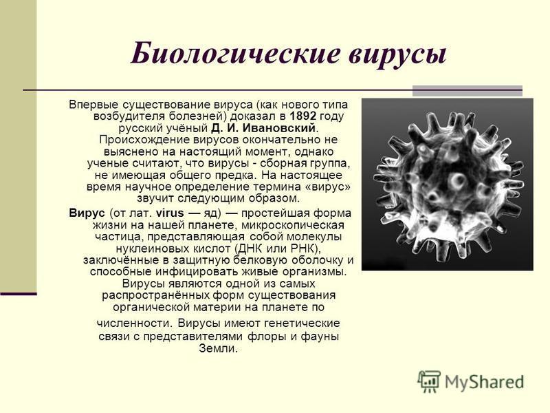 Биологические вирусы Впервые существование вируса (как нового типа возбудителя болезней) доказал в 1892 году русский учёный Д. И. Ивановский. Происхождение вирусов окончательно не выяснено на настоящий момент, однако ученые считают, что вирусы - сбор