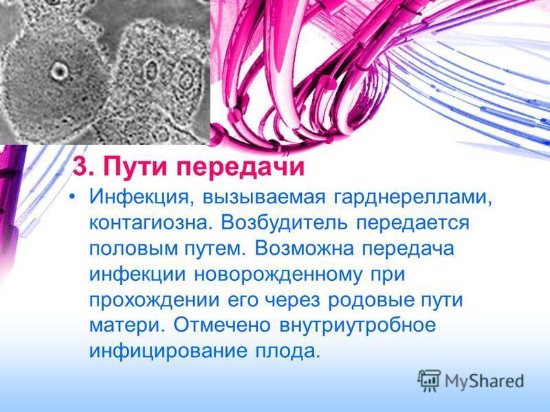 3. Пути передачи Инфекция, вызываемая гарднереллами, контагиозная. Возбудитель передается половым путем. Возможна передача инфекции новорожденному при прохождении его через родовые пути матери. Отмечено внутриутробное инфицирование плода.