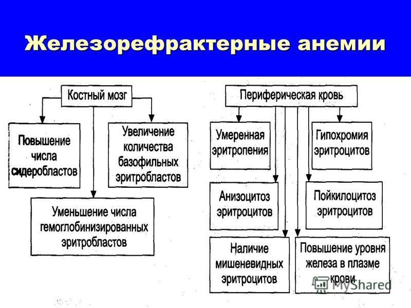 Железорефрактерные анемии