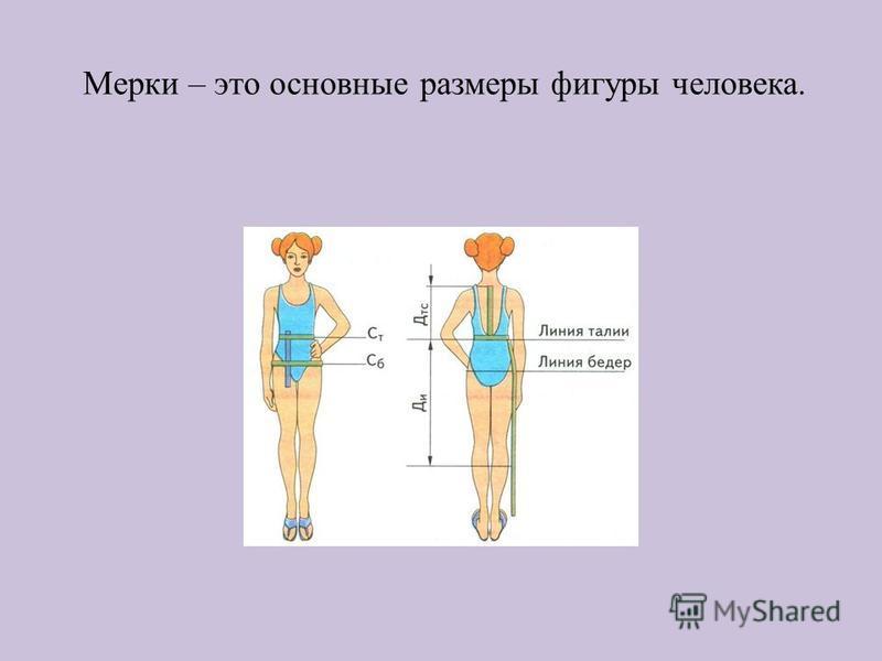 Мерки – это основные размеры фигуры человека.