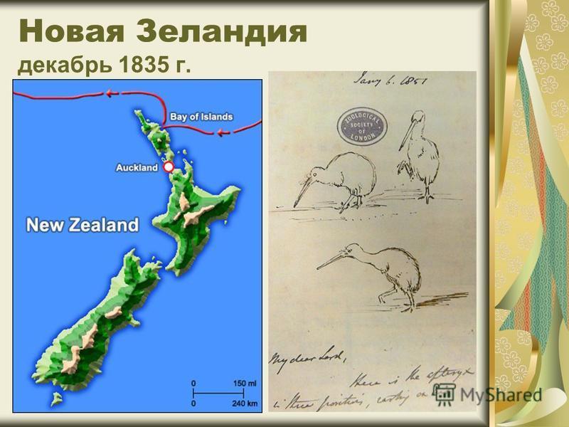 Новая Зеландия декабрь 1835 г.