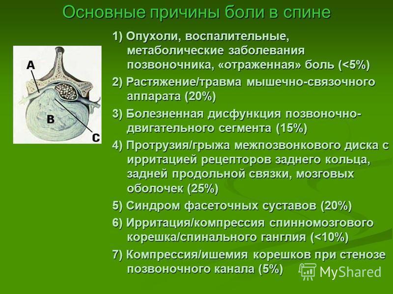 Принципы лечения дорсопатий Н.П. Новикова д.м.н., профессор кафедры неврологии и нейрохирургии СамГМУ