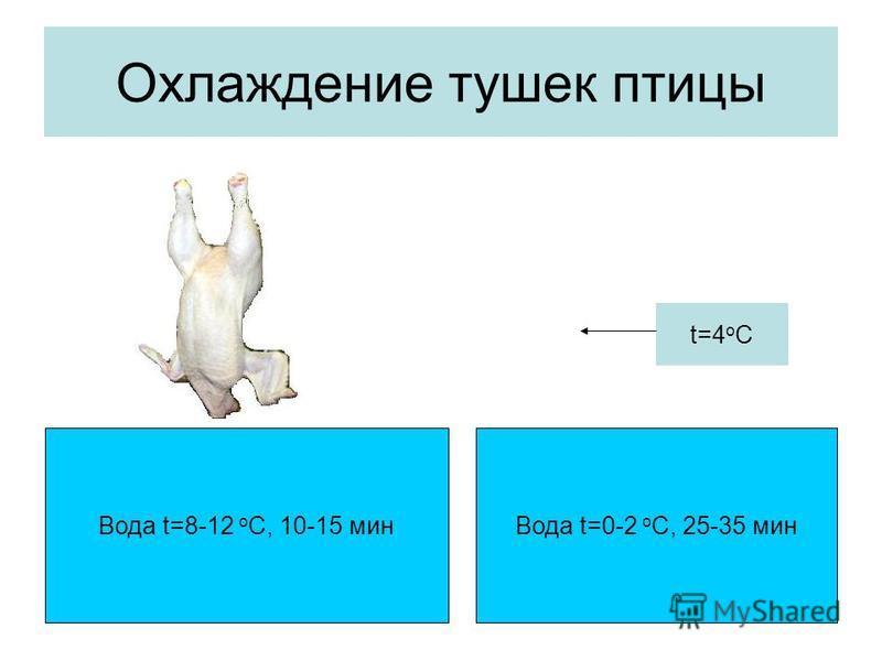 Охлаждение тушек птицы Вода t=8-12 о С, 10-15 мин Вода t=0-2 о С, 25-35 мин t=4 о С