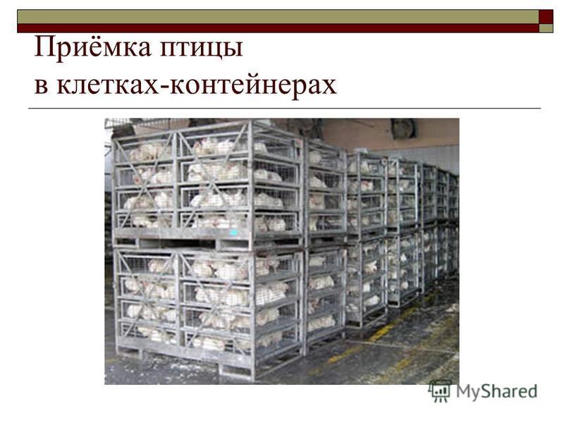 Приёмка птицы в клетках-контейнерах