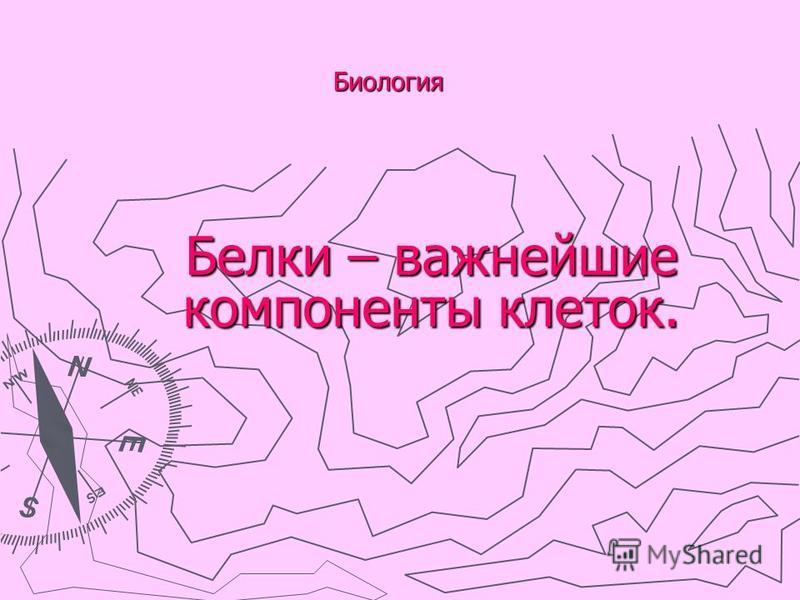 Биология Белки – важнейшие компоненты клеток.