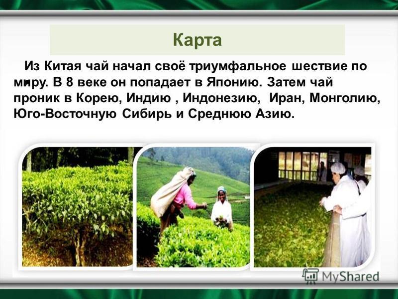 Из Китая чай начал своё триумфальное шествие по миру. В 8 веке он попадает в Японию. Затем чай проник в Корею, Индию, Индонезию, Иран, Монголию, Юго-Восточную Сибирь и Среднюю Азию. Карта