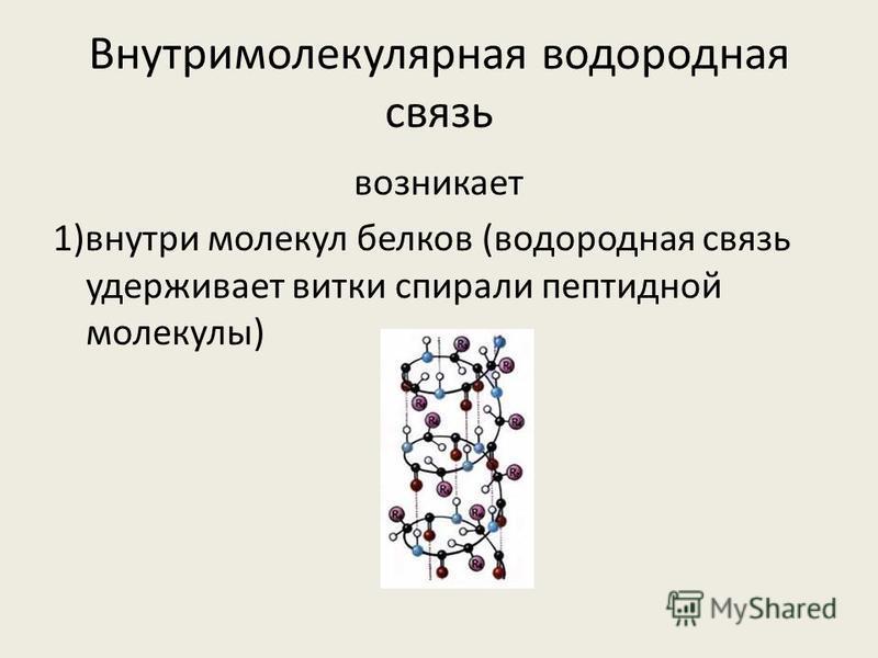 Внутримолекулярная водородная связь возникает 1)внутри молекул белков (водородная связь удерживает витки спирали пептидной молекулы)