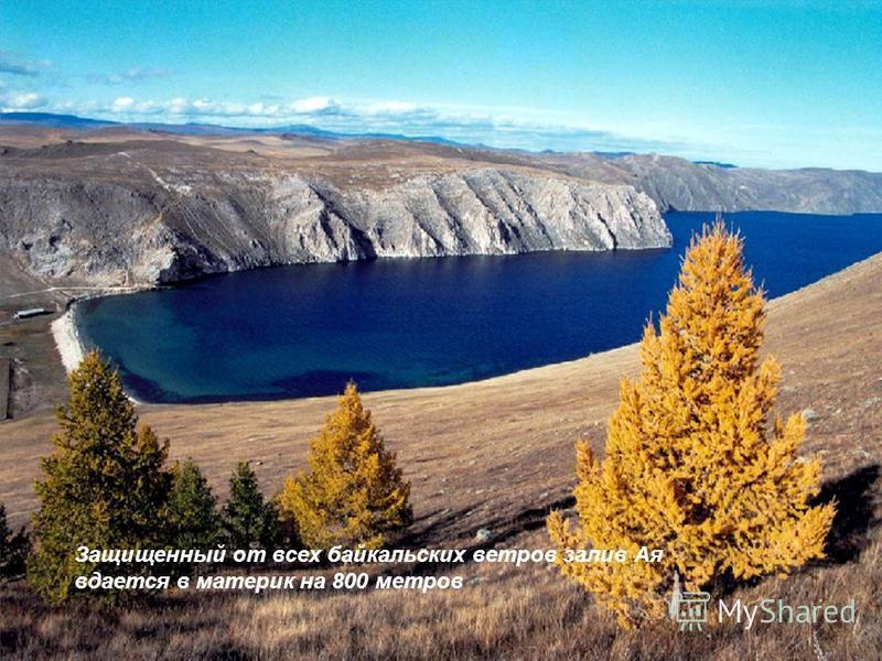 Защищенный от всех байкальских ветров залив Ая вдается в материк на 800 метров