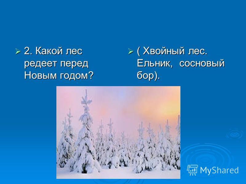 2. Какой лес редеет перед Новым годом? ( Хвойный лес. Ельник, сосновый бор). ( Хвойный лес. Ельник, сосновый бор).
