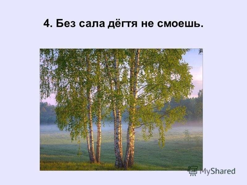 4. Без сала дёгтя не смоешь.