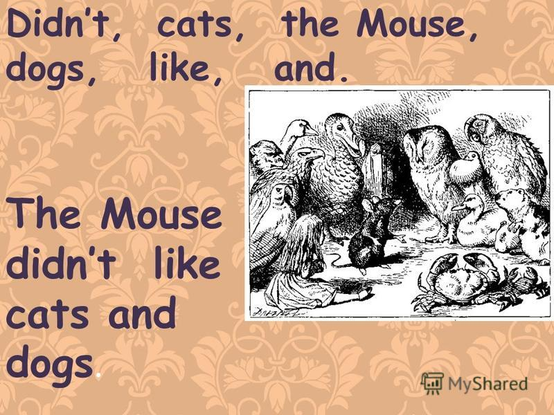 Didnt, cats, the Mouse, dogs, like, and. The Mouse didnt like cats and dogs.