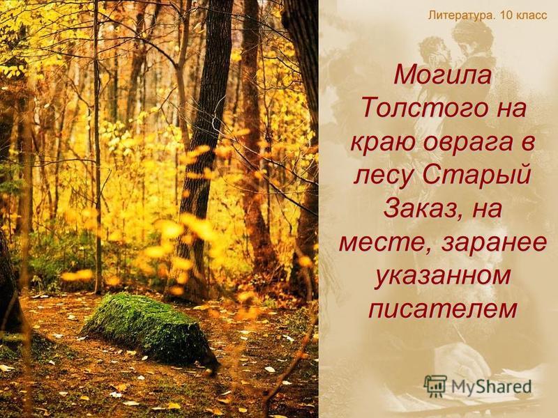 Могила Толстого на краю оврага в лесу Старый Заказ, на месте, заранее указанном писателем