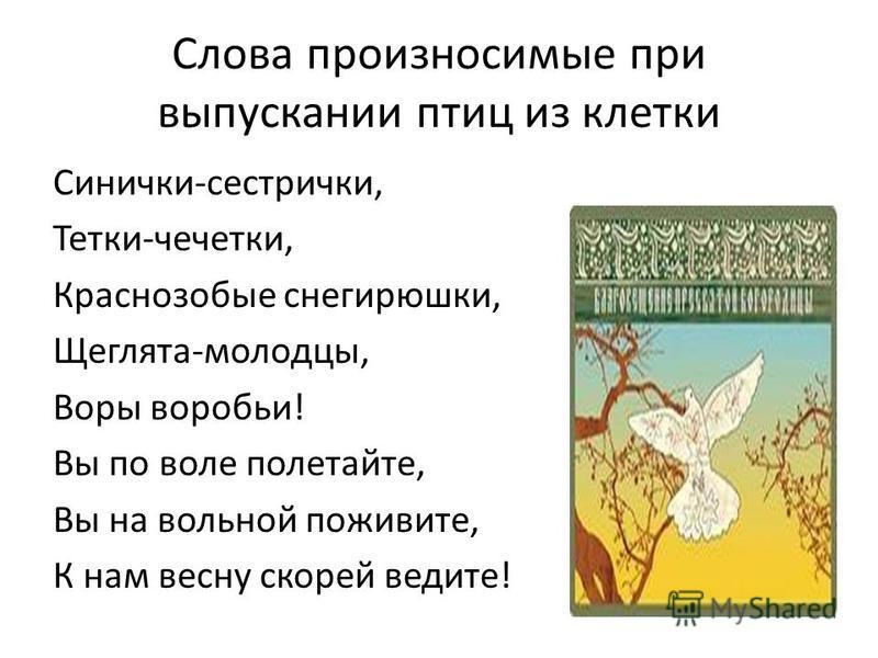 Слова произносимые при выпускании птиц из клетки Синички-сестрички, Тетки-чечетки, Краснозобые снегирюшки, Щеглята-молодцы, Воры воробьи! Вы по воле полетайте, Вы на вольной поживите, К нам весну скорей ведите!