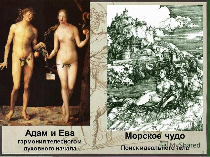 Адам и Ева гармония телесного и духовного начала Морское чудо Поиск идеального тела