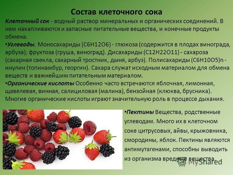 Состав клеточного сока Клеточный сок - водный раствор минеральных и органических соединений. В нем накапливаются и запасные питательные вещества, и конечные продукты обмена. Углеводы. Моносахариды (С6Н12О6) - глюкоза (содержится в плодах винограда, а