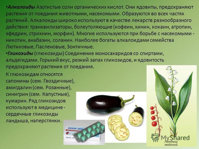 Алкалоиды Азотистые соли органических кислот. Они ядовиты, предохраняют растения от поедания животными, насекомыми. Образуются во всех частях растений. Алкалоиды широко используют в качестве лекарств разнообразного действия: транквилизаторы, болеутол